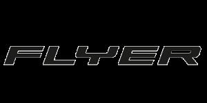 flyer-vae
